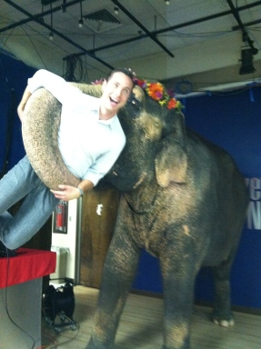 """Tai from """"Water For Elephants,"""" """"Operation Dumbo Drop,"""" and """"George of the Jungle."""""""
